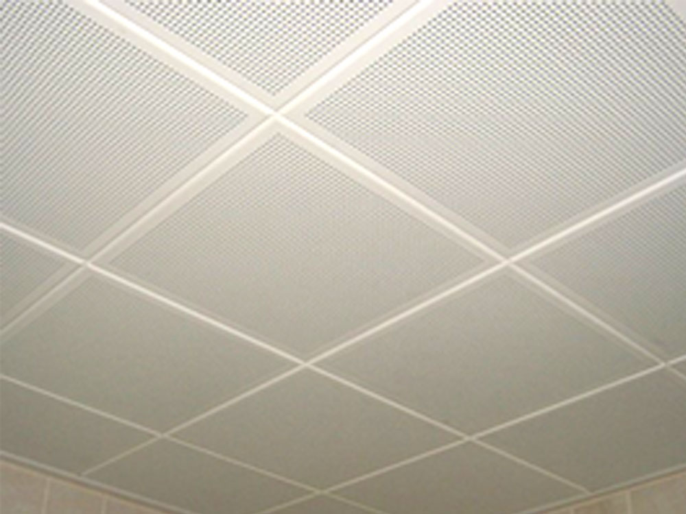 Aluminum Ceiling Projects